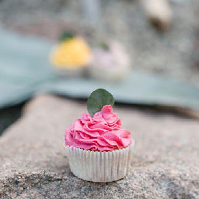 mundus-hannover-candybar-hochzeit-torten-cupcakes-cakepops-presse-15