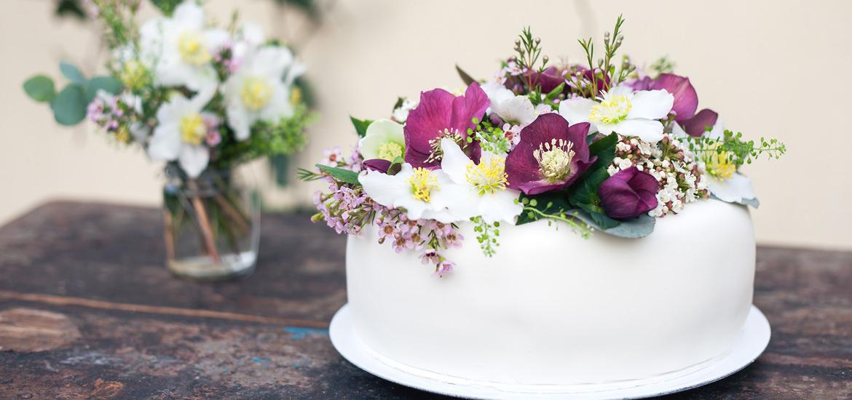mundus-hannover-candybar-cupcakes-cakepops-torten-kekse-startseite-03