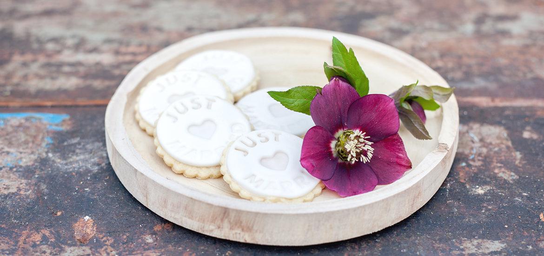 mundus-hannover-candybar-cupcakes-cakepops-torten-kekse-startseite-04